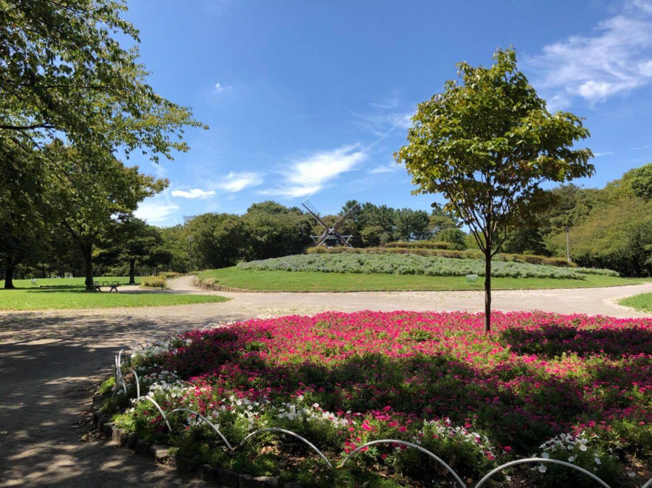名城公園の景色に癒やされ