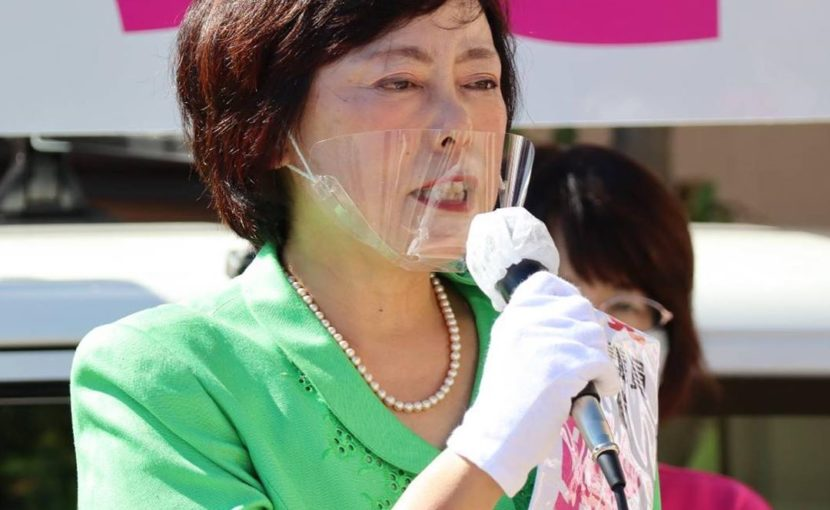 岡崎市議会議員選挙・野島さつき候補の出陣