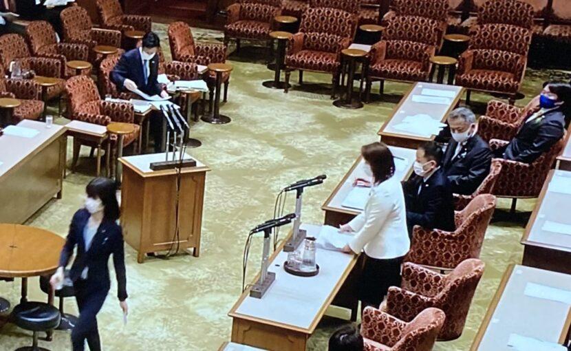 竹谷さんが議員運営委員会で渾身の質疑
